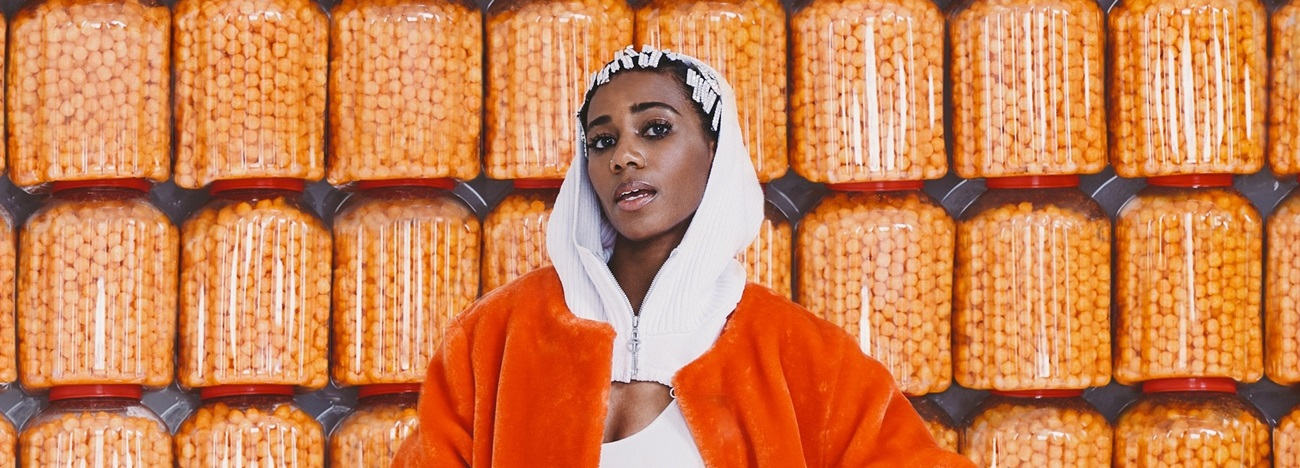 Pop, Electronic Santigold